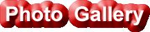HRM Oba S. A. Elegushi logo